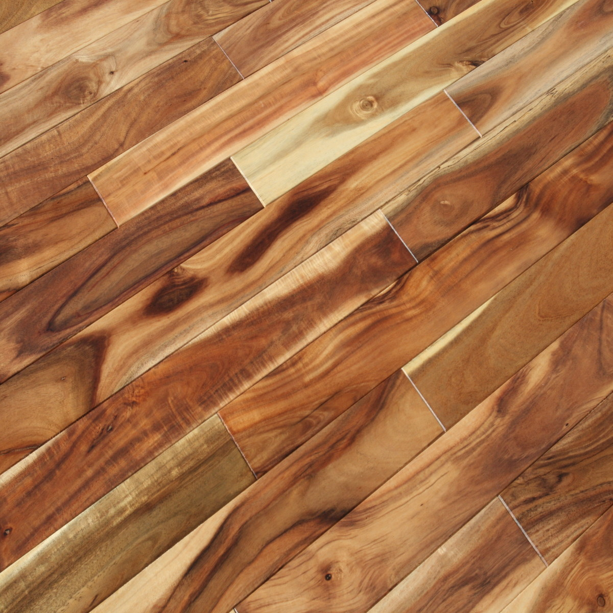 Acacia blonde hardwood flooring acacia confusa wood for Unfinished wood flooring