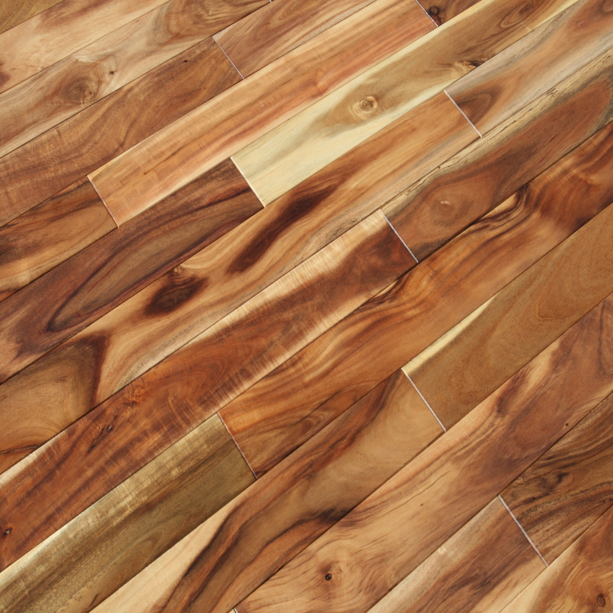Wood Flooring Product : Acacia blonde hardwood flooring confusa wood floors