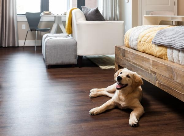 Best Types of Wood Floors for Pets